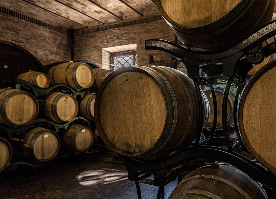 Vino rosso e Chardonnay in Toscana